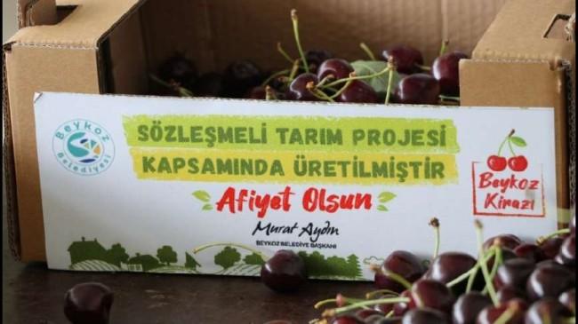 Adil Sözleşmeli Tarım'da Yeni Sezon Hazırlıkları Başladı
